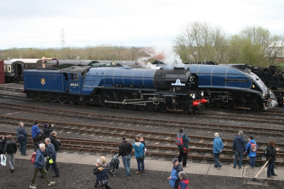 Tornado and Sir Nigel Gresley at Didcot