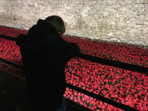 Poppy pageant: London's Great War centenary memorial